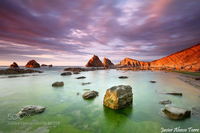 Photograph Jardín de rocas by Javier Alonso Torre on 500px