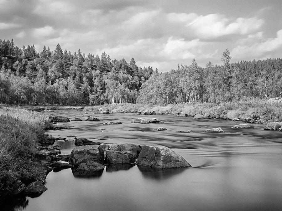 Pahaoja - Lapland