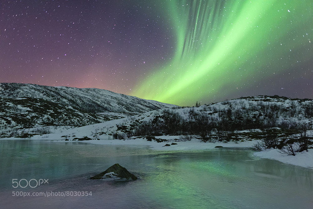 Photograph Sommaroy Aurora by Joe Rainbow on 500px
