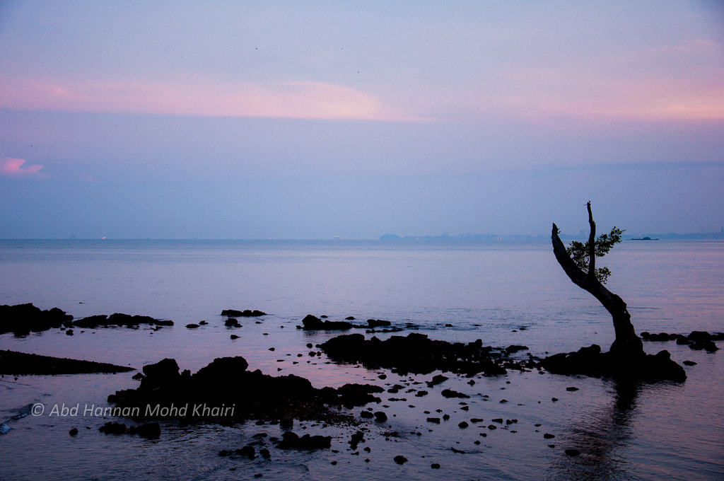 Photograph morning by abdhannan mohdkhairi on 500px