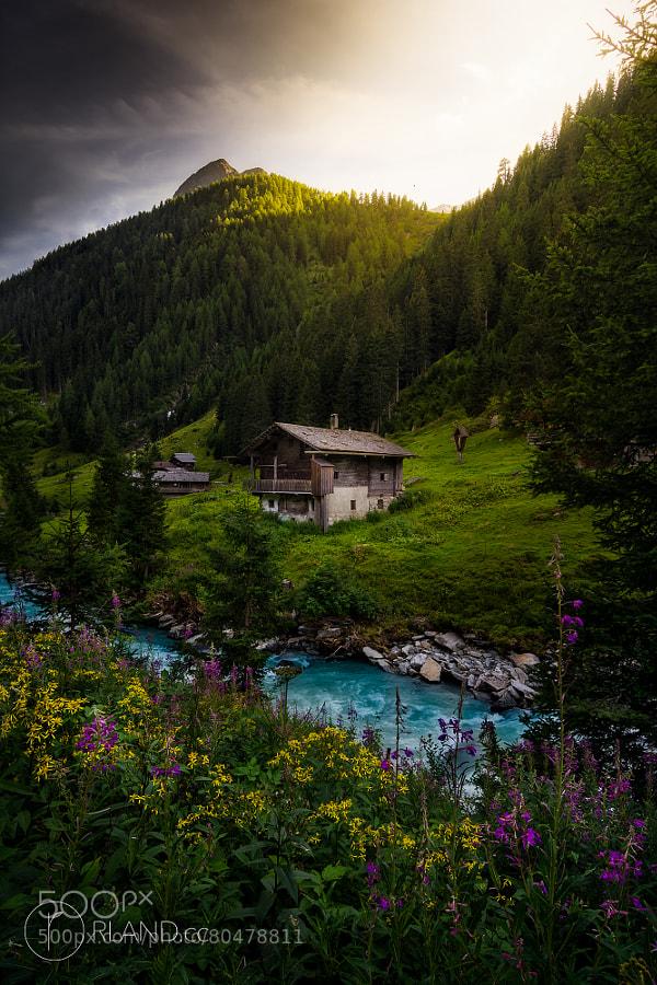 Alpen Kitsch by Roland Maria Reininger