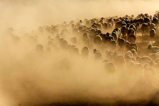 Going nowhere by Janet Kwan on 500px