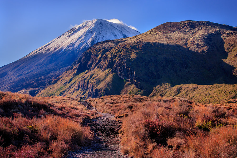 Mt. Ngauruhoe by Dani Stein on 500px.com