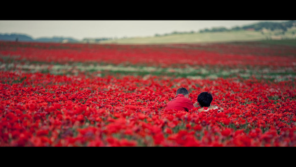 Photograph Red by laura  malucchi on 500px