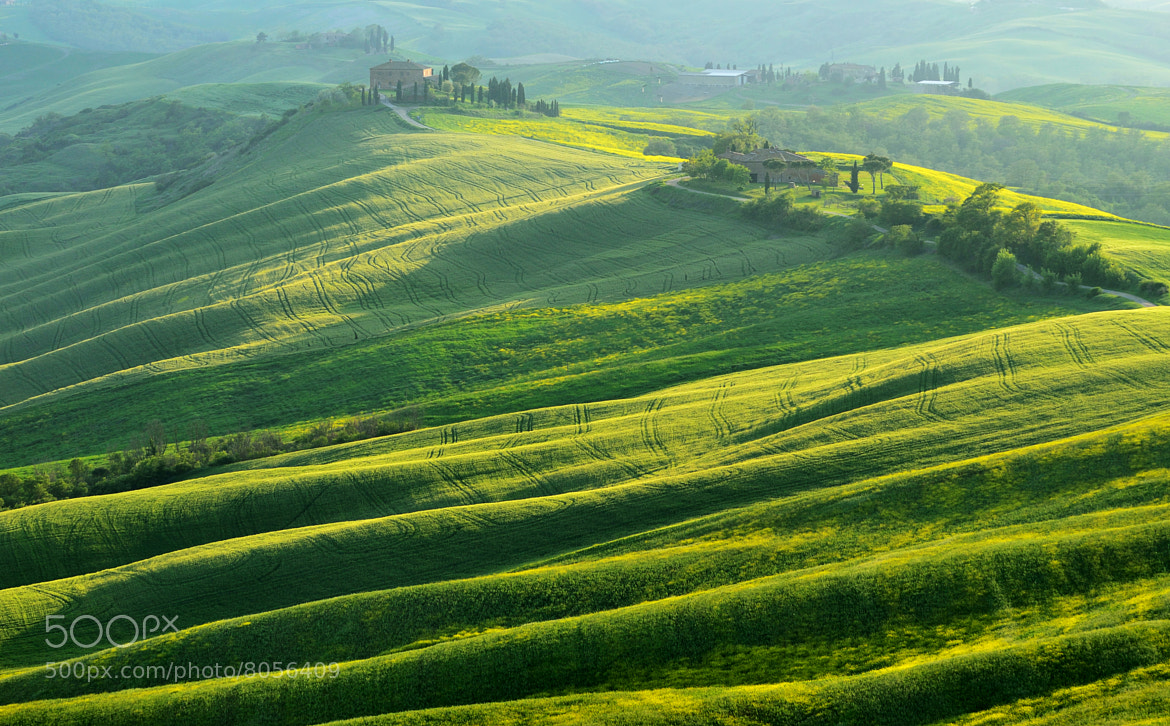 Photograph Rolling Hills by Csilla Zelko on 500px