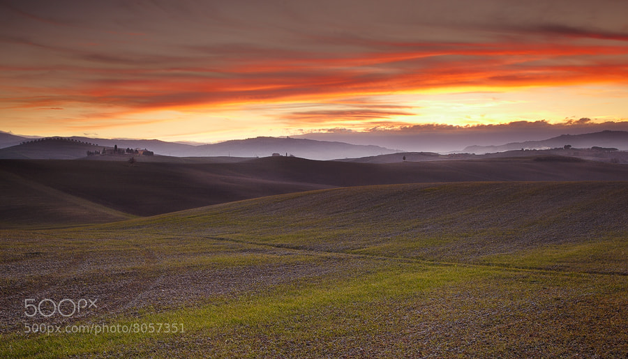 Photograph Live in Val D' Orcia by Stefano Rossi on 500px