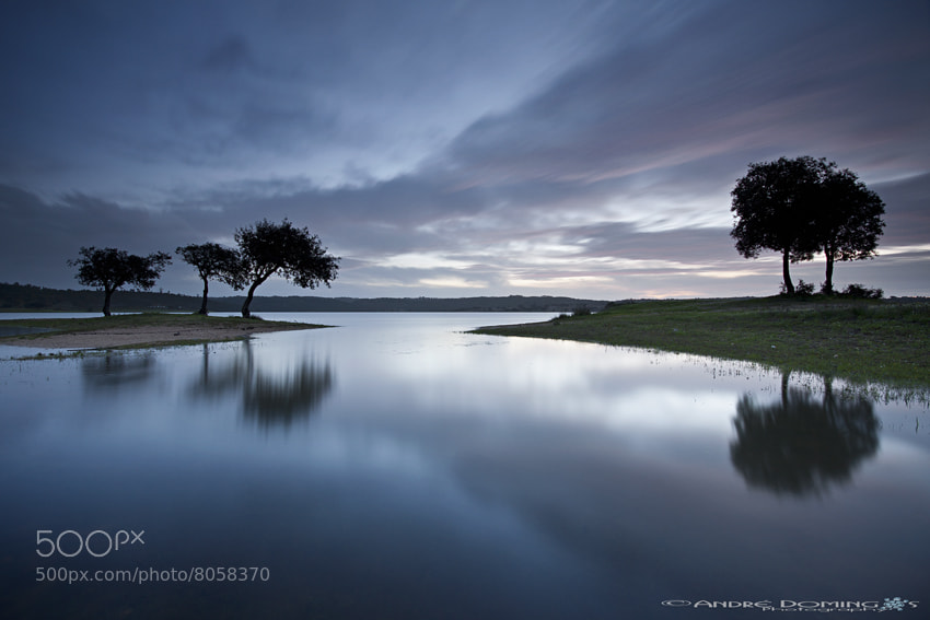 "Photograph "" Silent morning "" by André  Domingos on 500px"