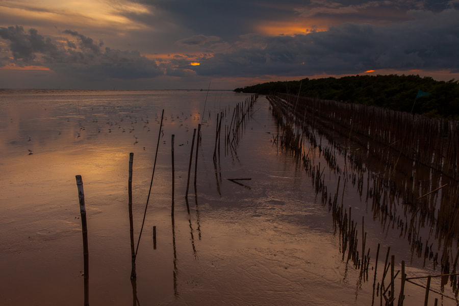 Photograph sticks by Charles Ramiscal on 500px