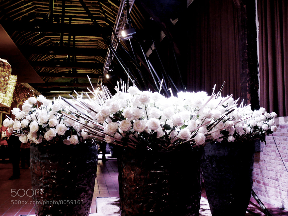 Photograph WHITE BOUQUETS  by oeth 0401 on 500px