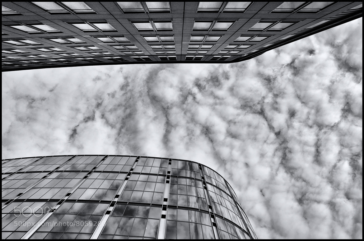 Photograph look upwards by Florian  Weber on 500px