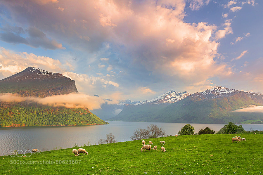 Photograph An evening in Norway by Sean Ensch on 500px
