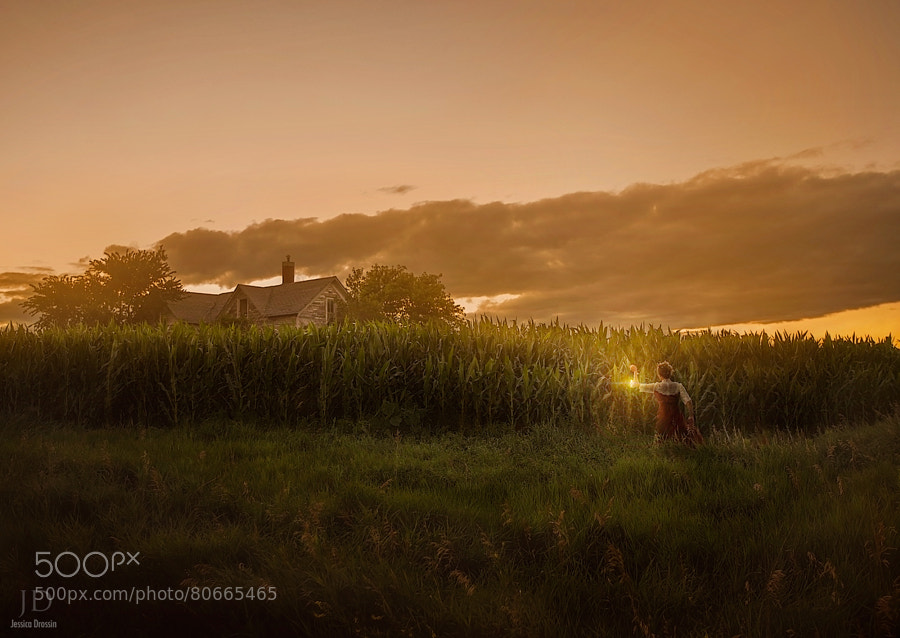 Photograph Searching for Home by Jessica Drossin on 500px