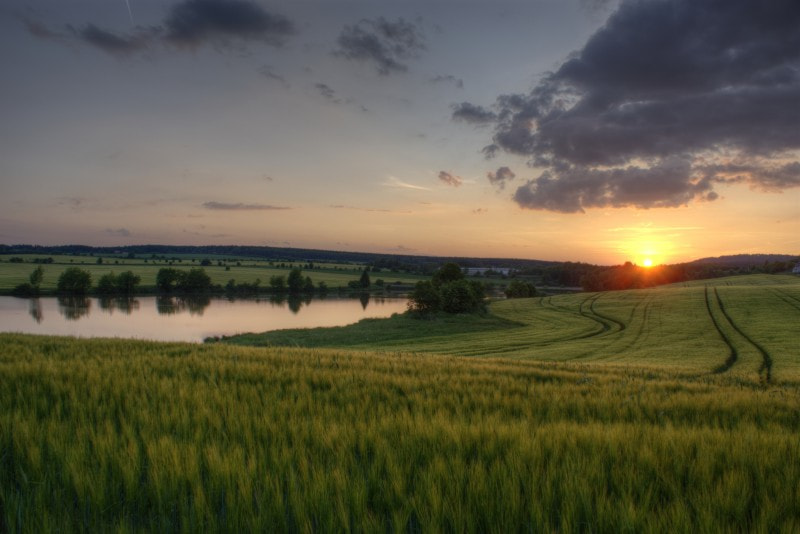 Photograph sunset over the field by Tomáš Novotný on 500px