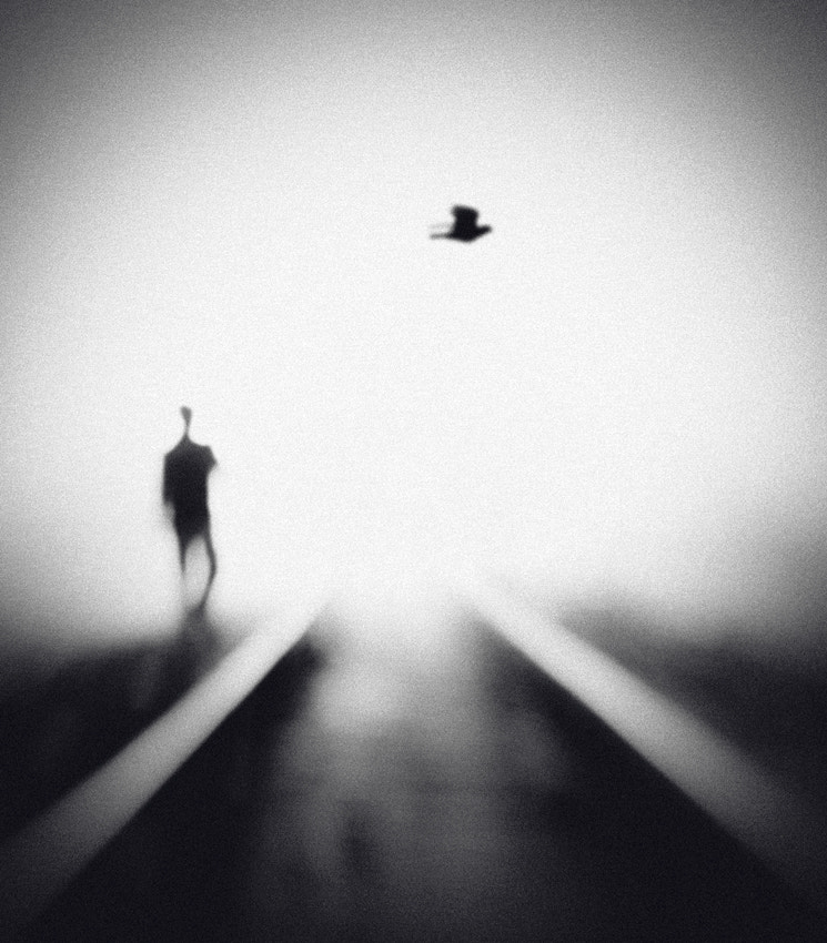 Photograph Nocturne by Hengki Lee on 500px