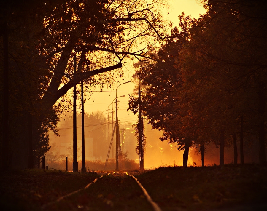 Photograph Road to nowhere... by Gosia Gorecka on 500px