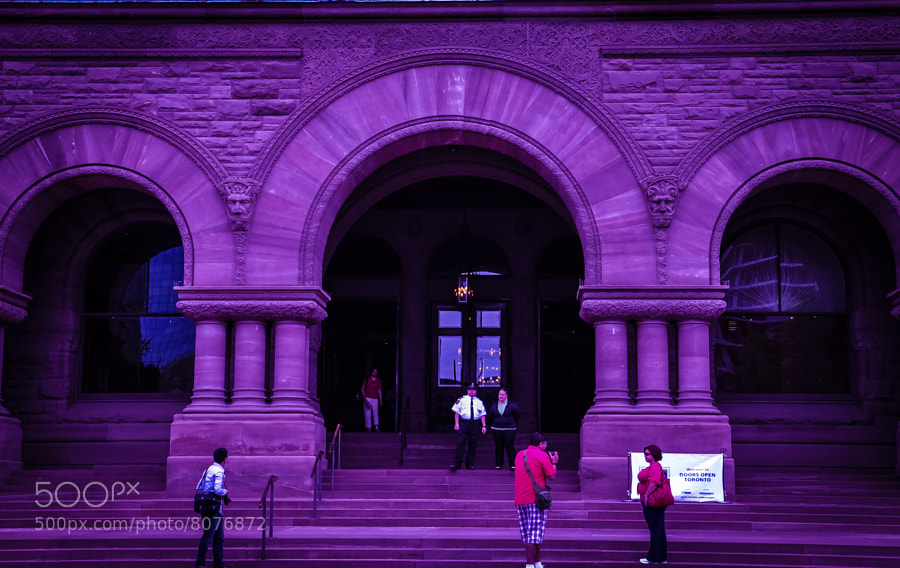 Something about this picture at Queen's Park in Toronto just moved me. YYMe? Ah, my camera's eye.