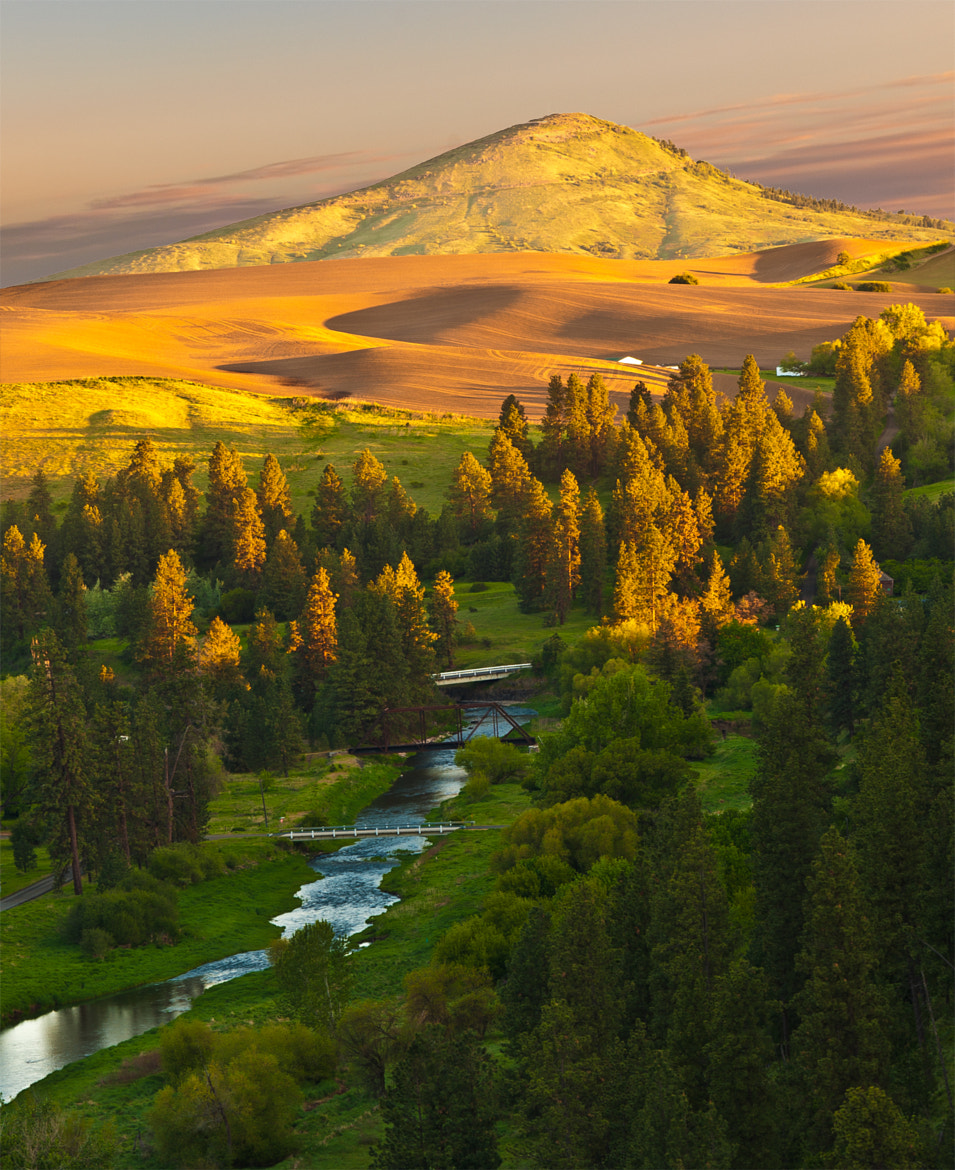 Photograph Golden Sunrise: Palouse River / Steptoe Butte by Alvin Kroon on 500px