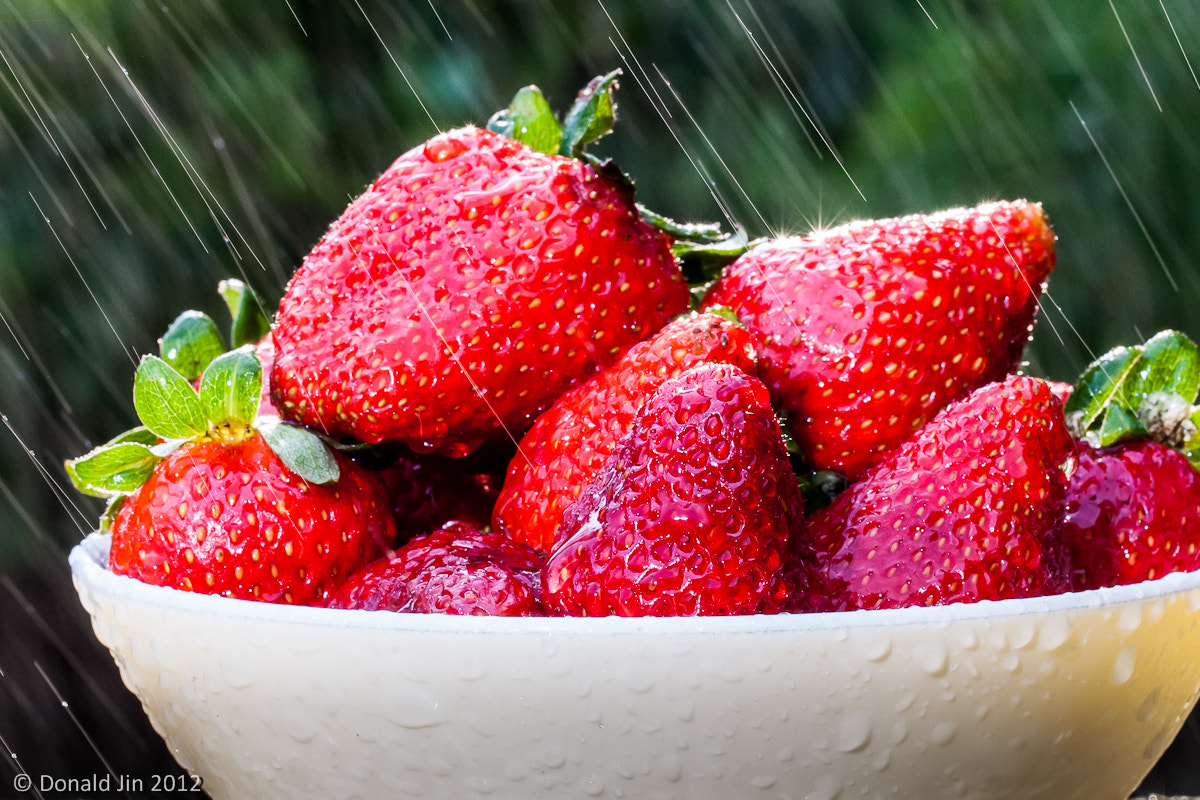 Photograph Strawberries in Rain by Donald Jin on 500px