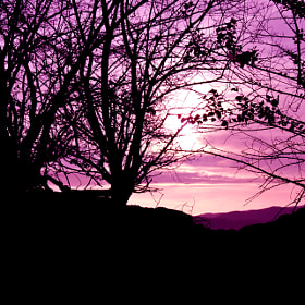 Purple Sunset by Burim Fejsko (burimbf)) on 500px.com