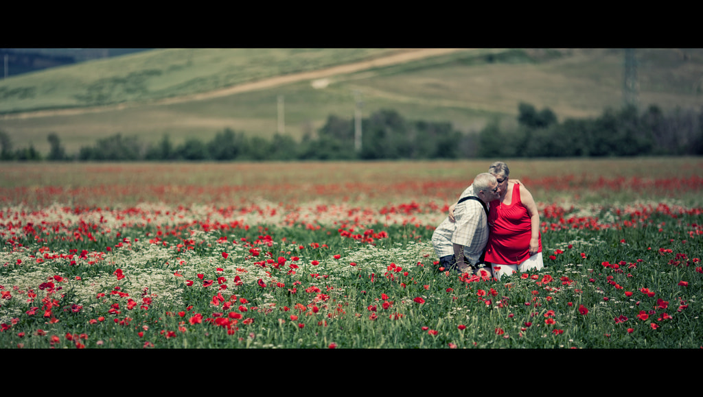 Photograph A long love by laura  malucchi on 500px