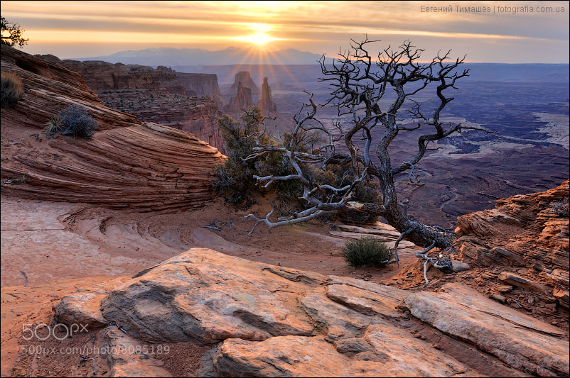 Photograph Canyonlands by Yevgen Timashov on 500px