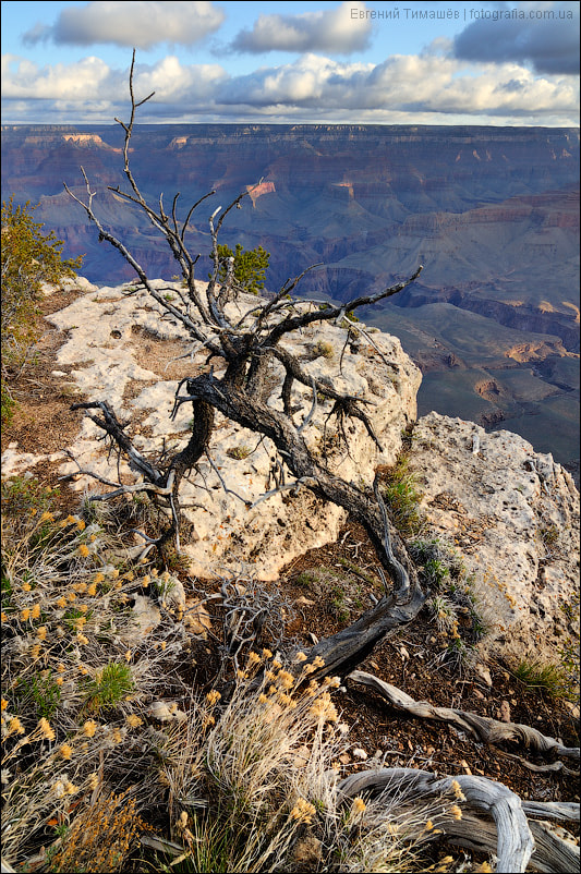 Photograph Grand Canyon by Yevgen Timashov on 500px