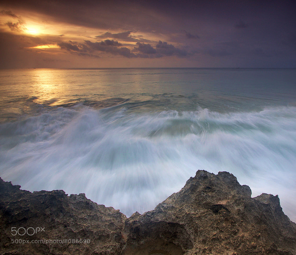 Photograph Dream wave by Helminadia Ranford on 500px