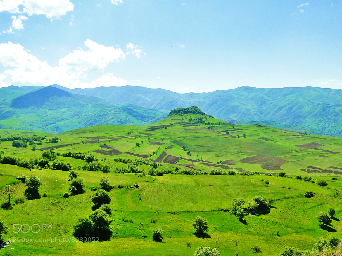 Photograph Green land by mehrdad tahermanesh on 500px