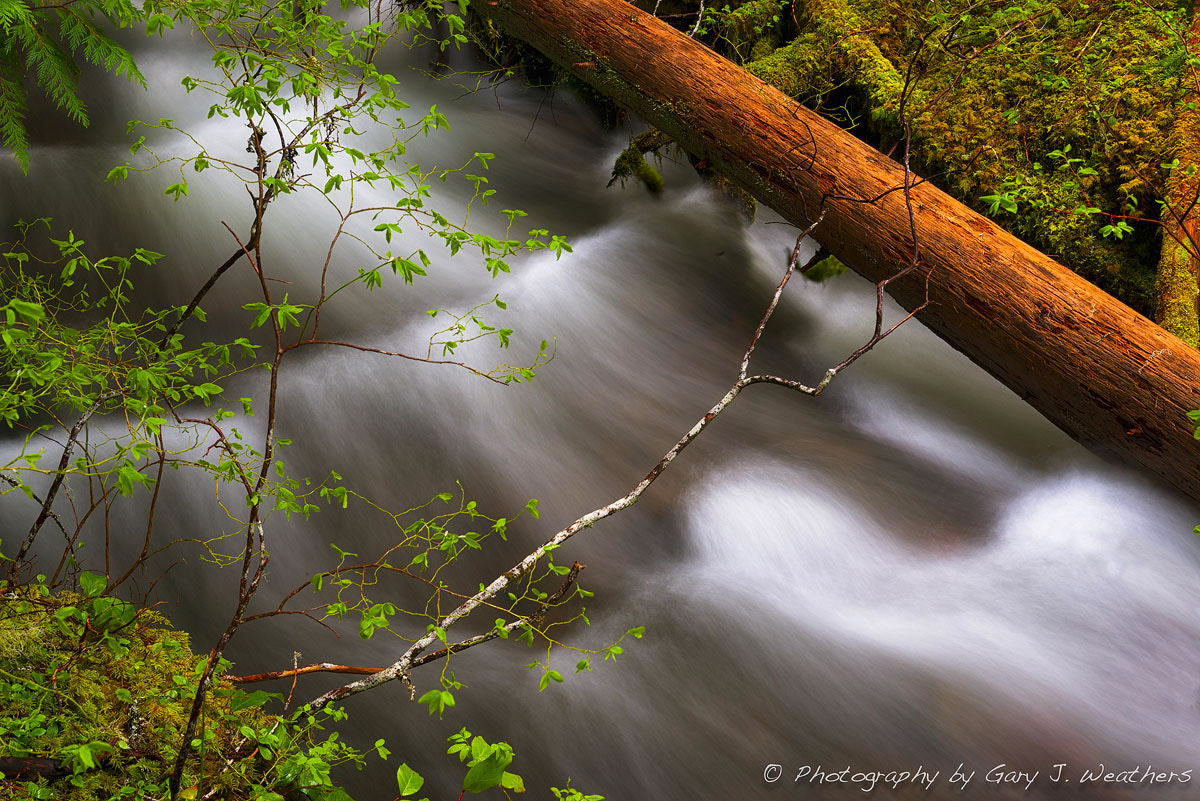 Photograph Flow by Gary Weathers on 500px