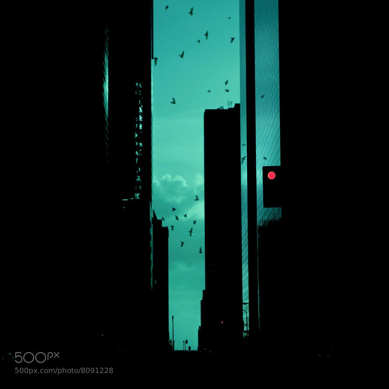 Photograph Gotham by Brandon  Flowers on 500px