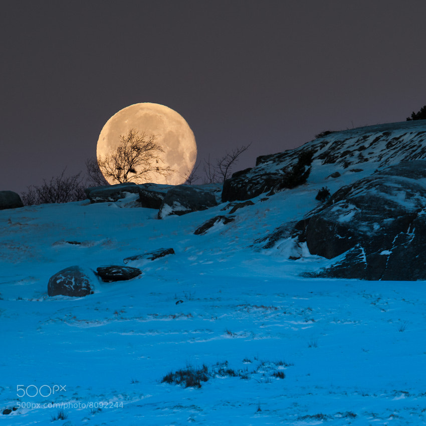 Photograph The moon by Tormod Drengstig on 500px