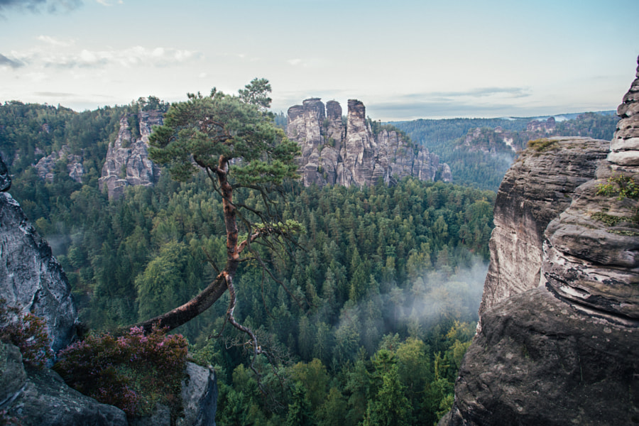 Saxon Switzerland by Moritz Peters on 500px.com