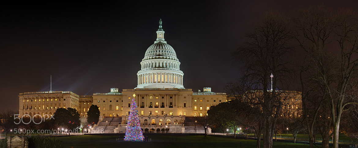 Photograph U.S. Capitol Christmas Tree – 2009 by Metro DC Photography on 500px