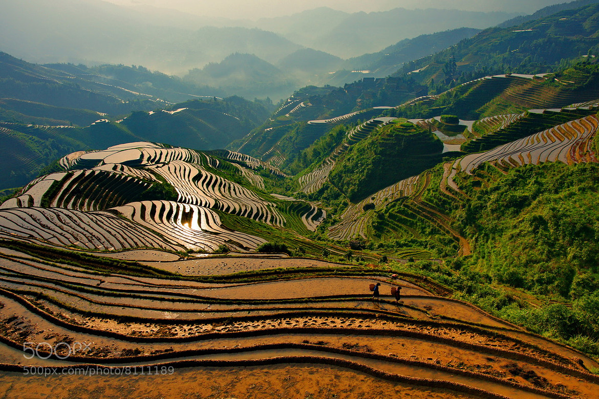 Photograph Dragon's Backbone Rice Terrace by SIJANTO NATURE on 500px