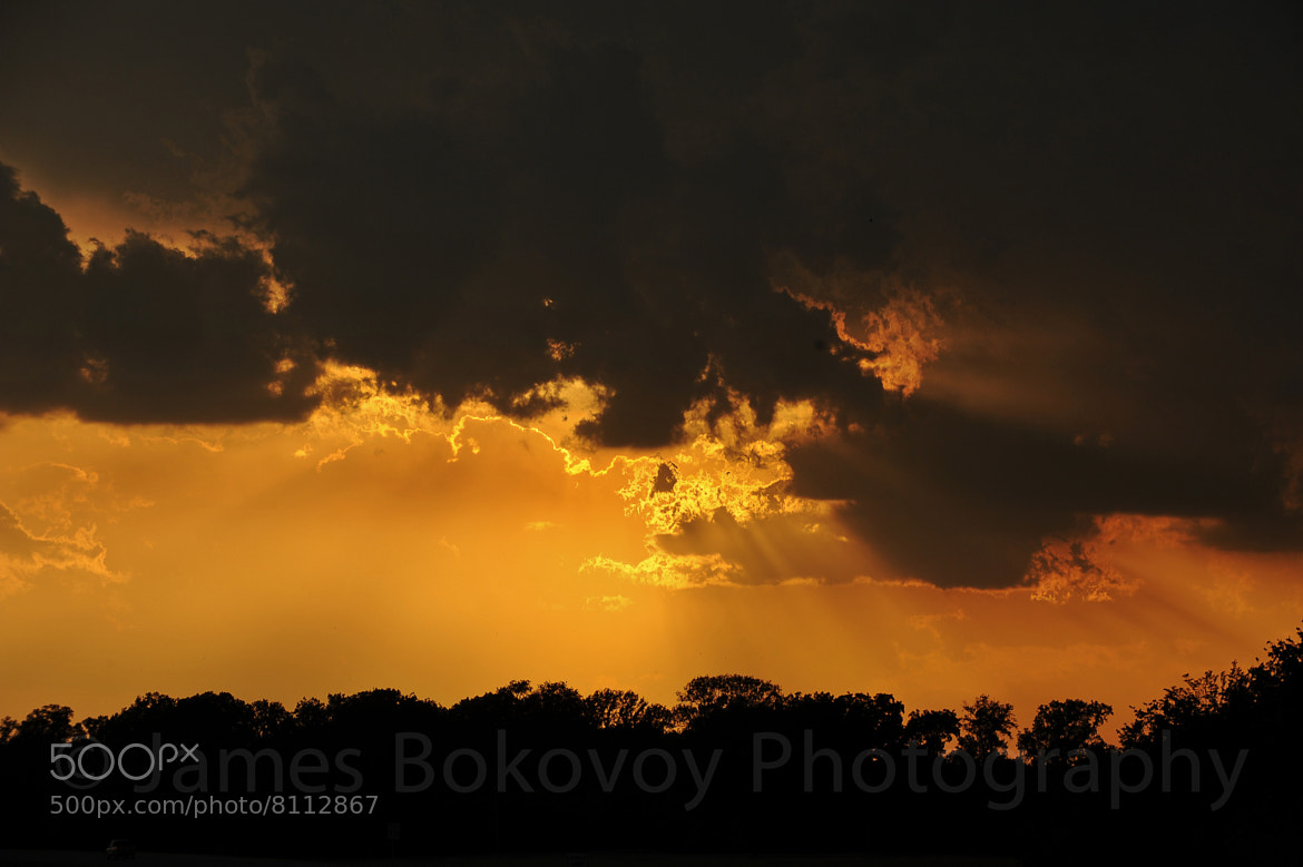 Photograph Golden Rays by James Bokovoy on 500px