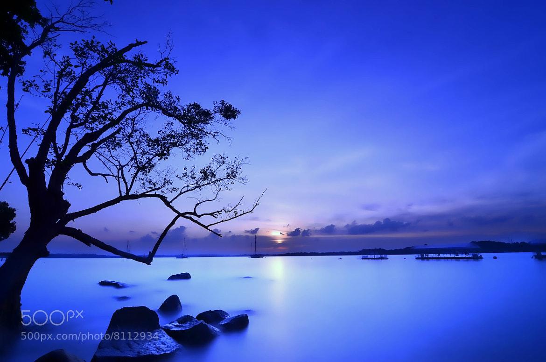 Photograph Blue Zone  by Jack Daniel on 500px