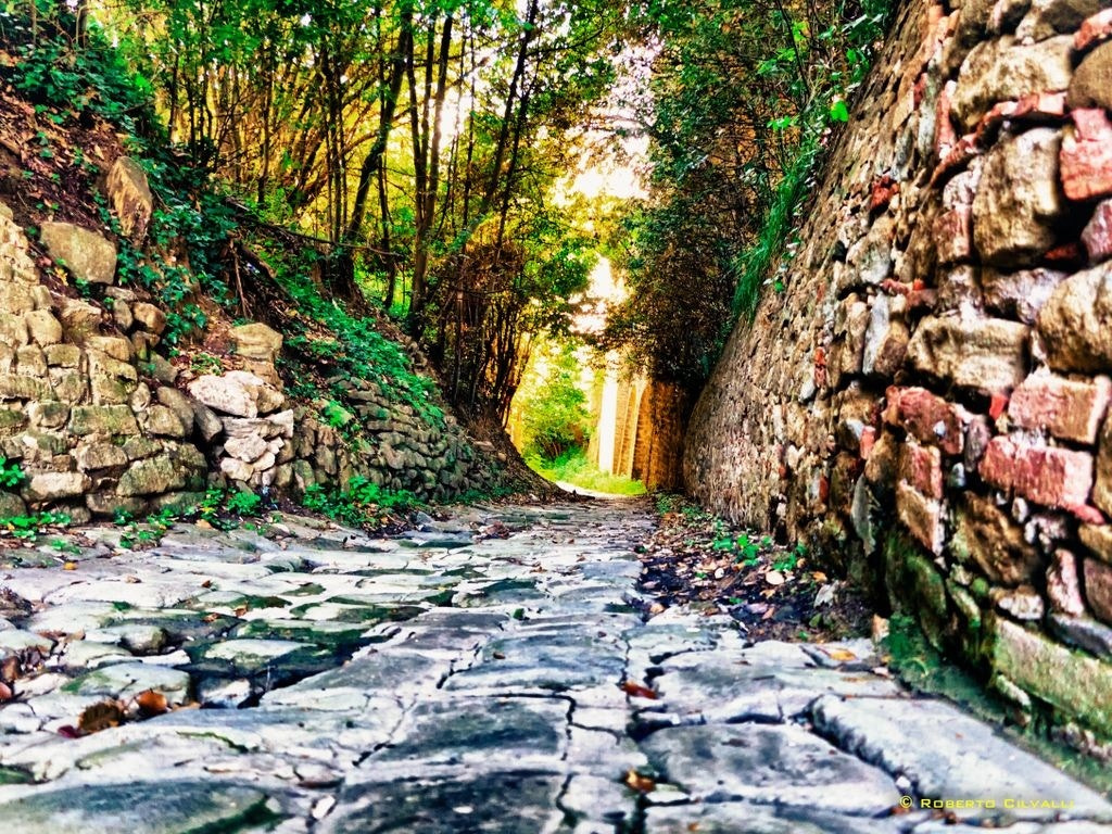 Photograph Old path Maremma by Roberto Cilvalli on 500px