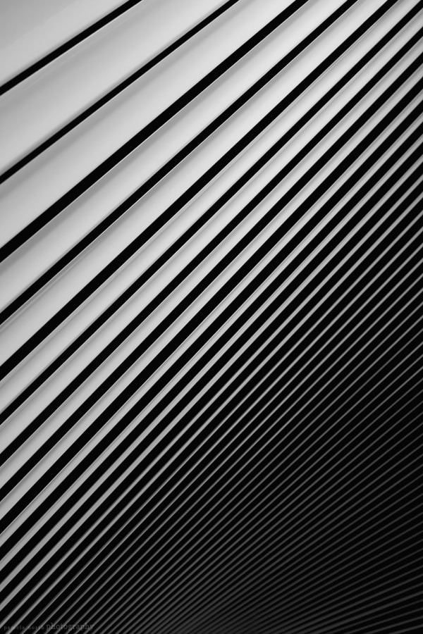 Photograph VENETIAN BLIND* by Pamela North on 500px