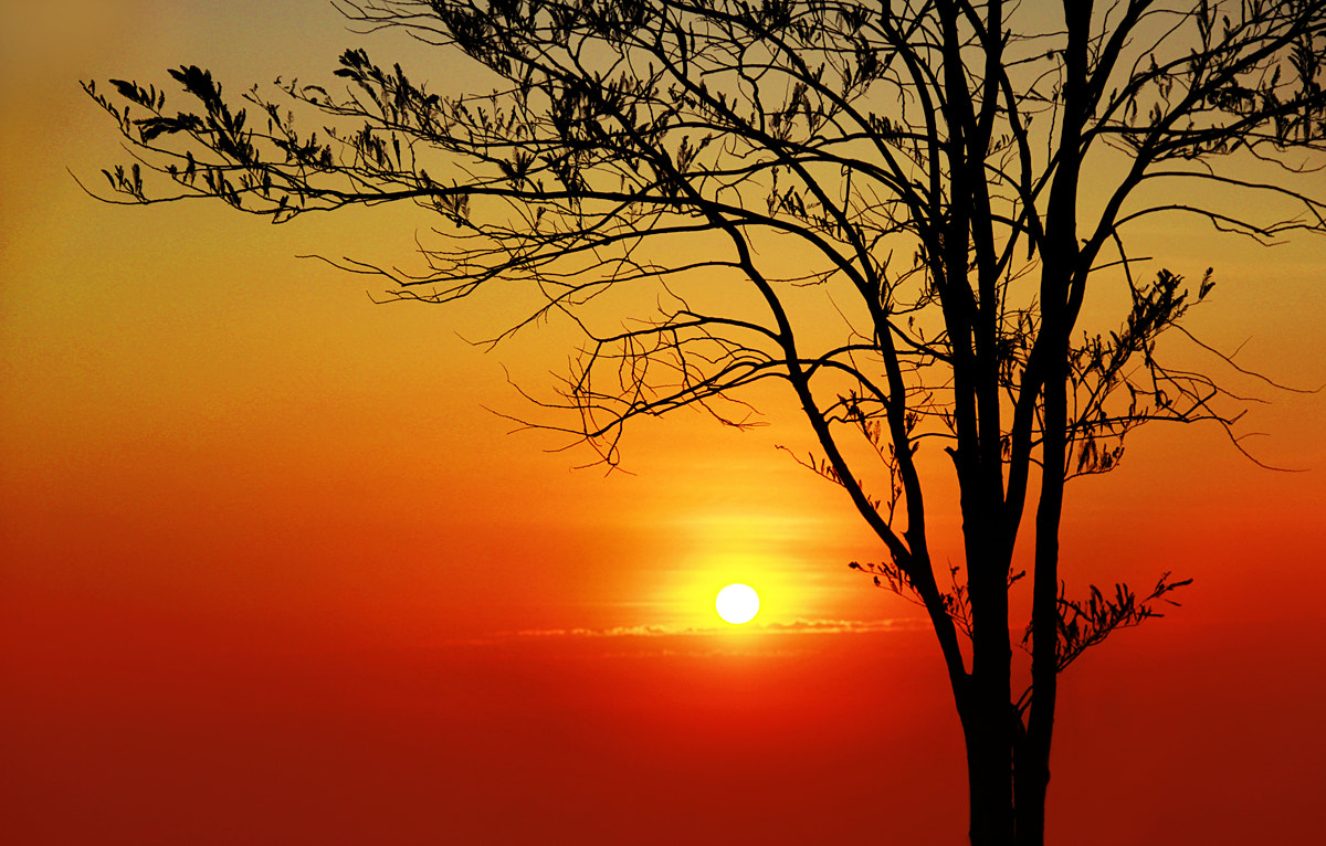 Photograph Dawn by Jantra Suktaworn on 500px
