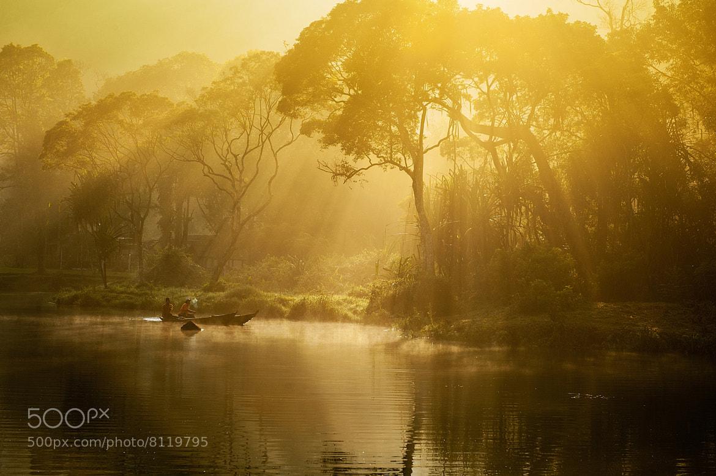 Photograph golden light by Yaman Ibrahim on 500px
