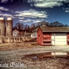 lincoln farm x