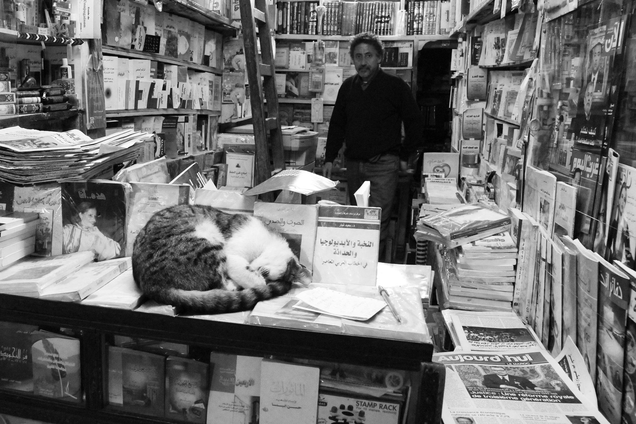 Photograph Books are for cats to sleep on by Jura Pick on 500px