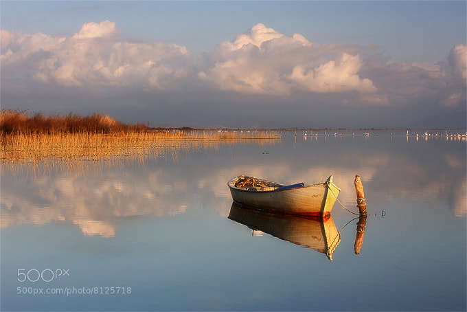 Photograph Tranquility by kani polat on 500px