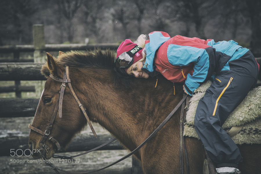 Sandra Lahnsteiner builds a connection with a horse in Argentina.