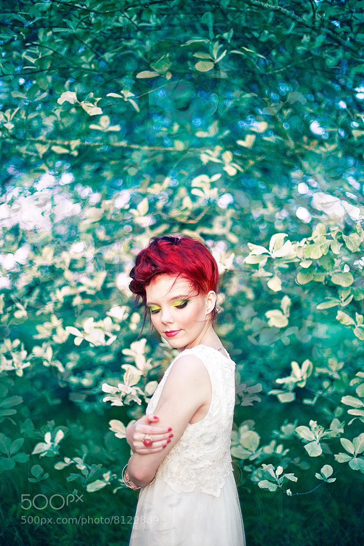 Photograph Green Cherries by Alex Beadon on 500px