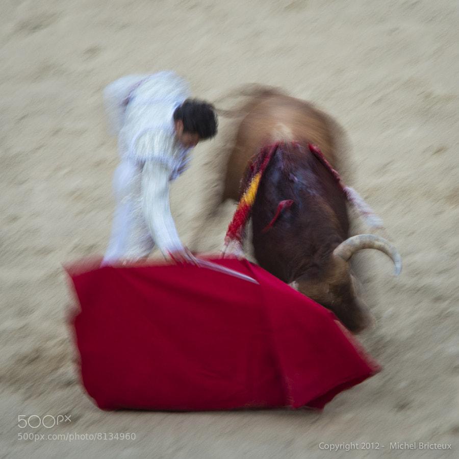 Día de Toros, II, Las Ventas by Michel Bricteux (mbricteux) on 500px.com