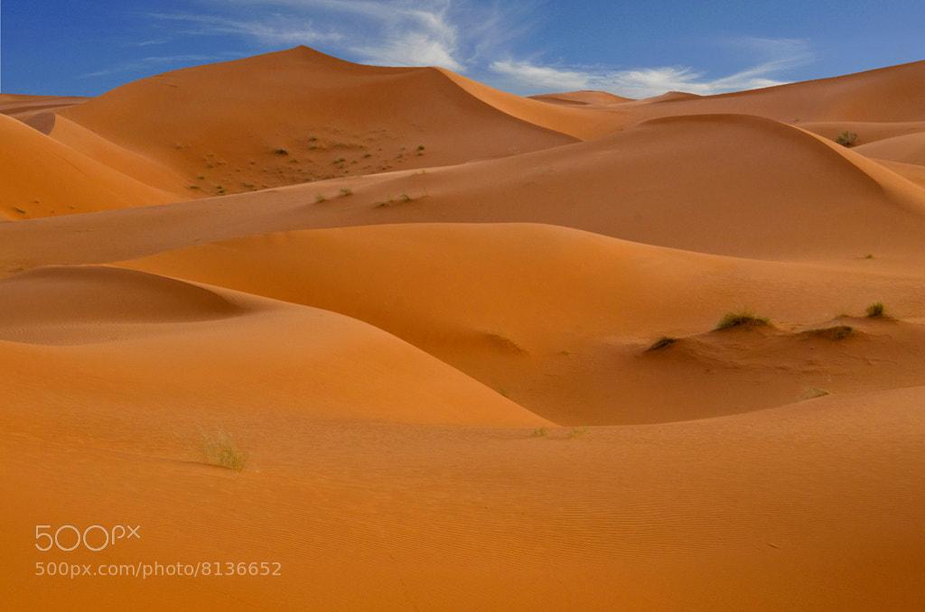 Photograph Sahara Meanders by Saud Alrshiad on 500px