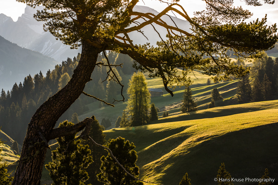 This photo was shot during the Dolomites West June 2014 photo workshop. There is a new Dolomites East and West photo workshop in June 2015 and open for bookings.