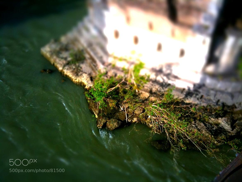 Photograph Small Rome 04 by Armando Brecciaroli on 500px