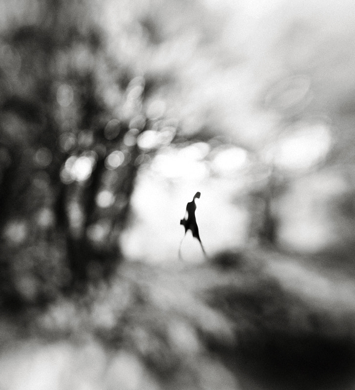 Photograph Equinox by Hengki Lee on 500px